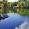 湯の湖の紅葉