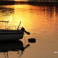 写真: 黄昏漁港