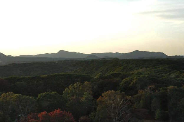 展望台から見た森林と山々