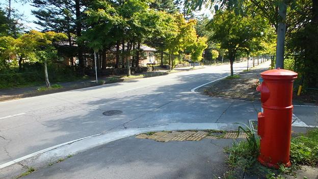 軽井沢タバコ屋前丸ポスト2