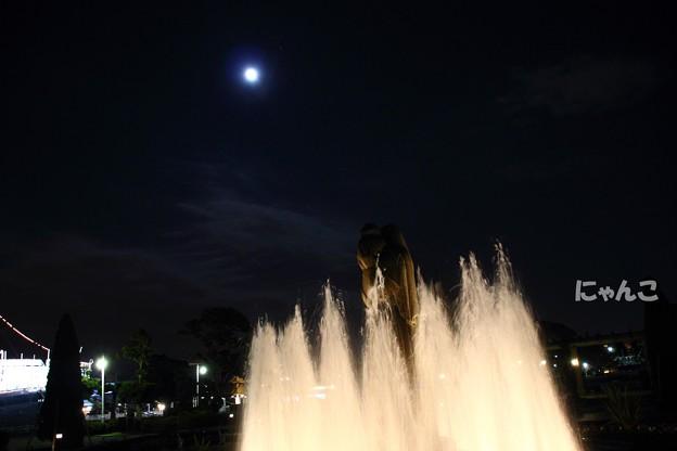 写真: ~月夜の晩に~