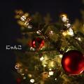 写真: ~クリスマスツリーを見上げたら~