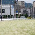 写真: 田園都市三田