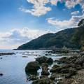 写真: 海岸を歩く