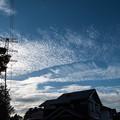 写真: 今朝の雲