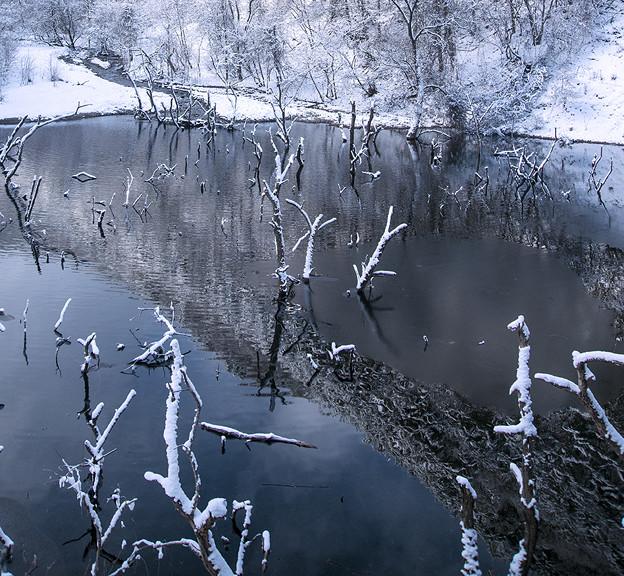 Photos: 冬の湖面