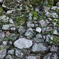 犬山城の石垣