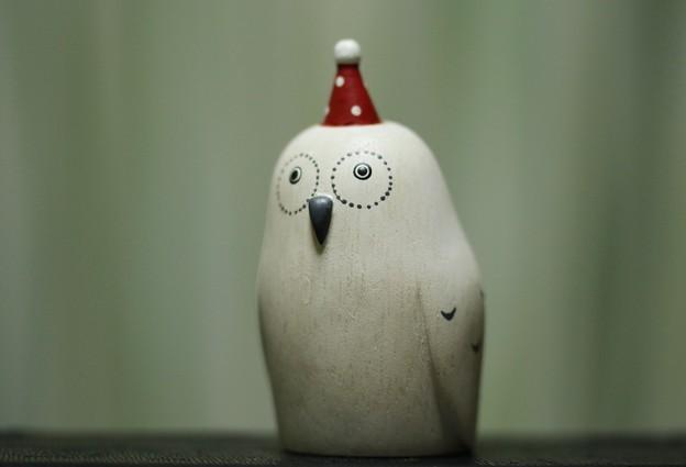 クリスマスフクロウ
