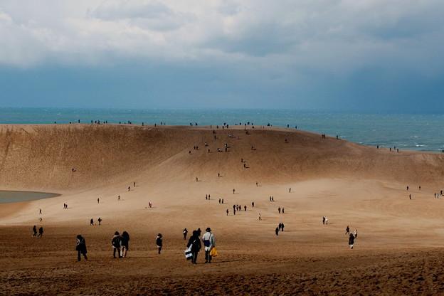 鳥取砂丘ー1