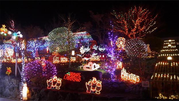 道の駅大任のクリスマスイルミ2014(3)