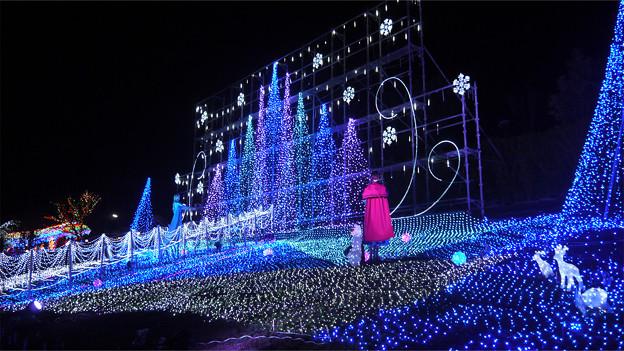 道の駅大任のクリスマスイルミ2014(1)