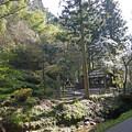 Photos: 石見銀山(3)龍源寺間歩