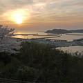 写真: 道の駅ゆうひパーク浜田(3)