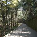 岩国城への道のり(1)