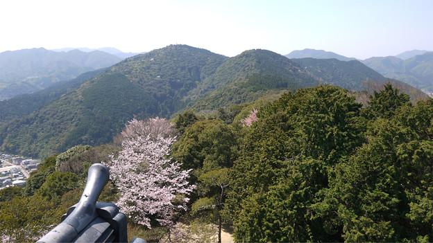 岩国城天守閣からの眺め(1)