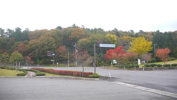 香取展望駐車場(2)