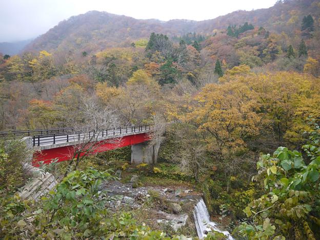 大山の紅葉(5)