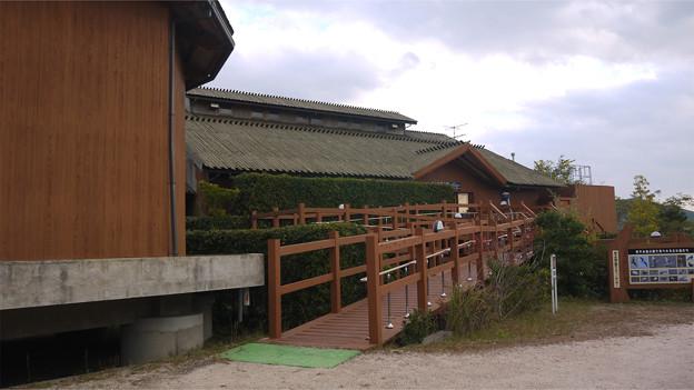 米子水鳥公園(1)