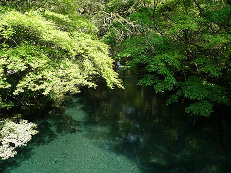 菊池渓谷(2)