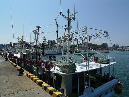 福岡市港。いか釣り船