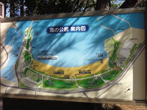 uminokouen_kanazawa_map