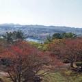 Photos: nojimakouen_kanazawa_p06