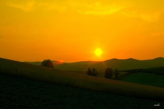 夕日のスポットライト