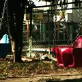 写真: 無人の公園