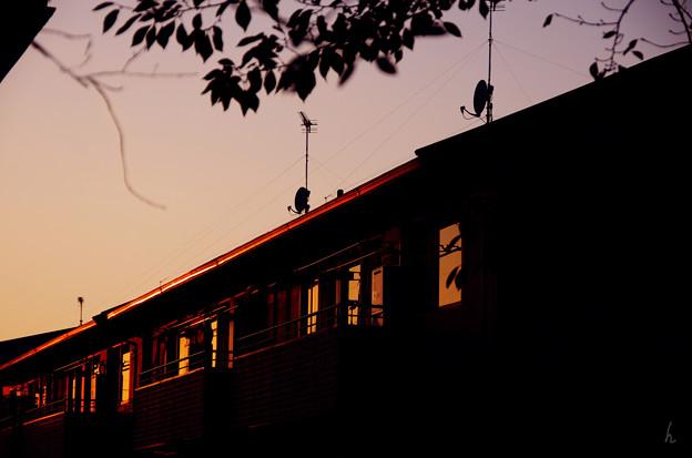 夕刻の家路