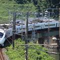 橋と特急列車