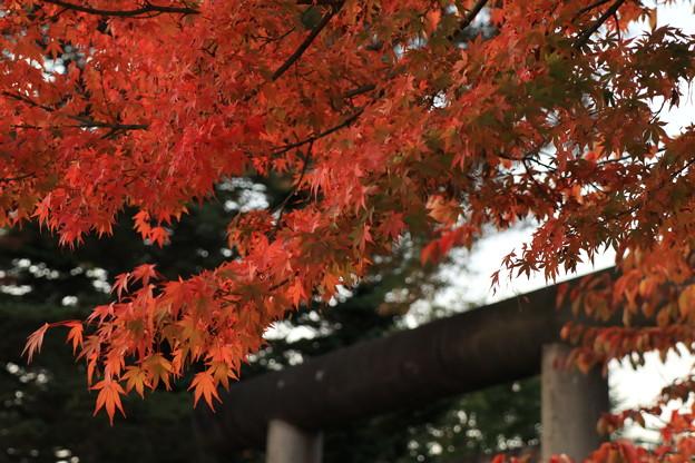 秋の静けさ
