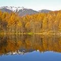 写真: 八ヶ岳の湖