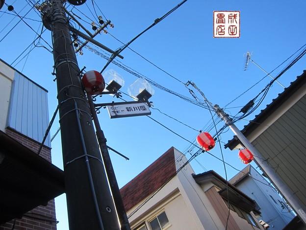 写真: 弁天様09