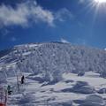 写真: 蔵王樹氷