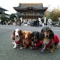 Photos: 成田山へ~