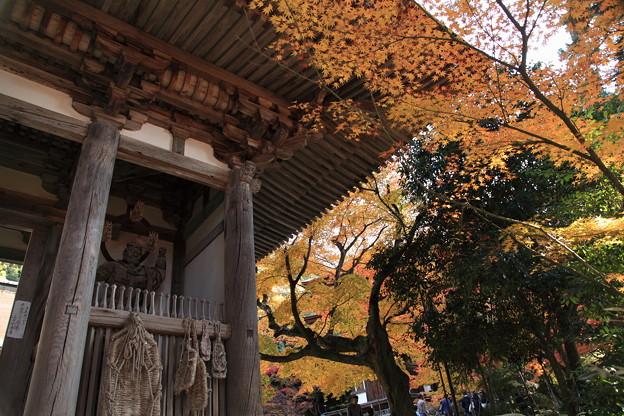 Photos: 西明寺(1) 二天門と紅葉