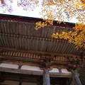 Photos: 西明寺(5) 二天門と紅葉