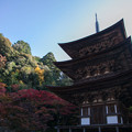 西明寺(8) 三重の塔