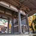金剛輪寺(8) 二天門と本堂