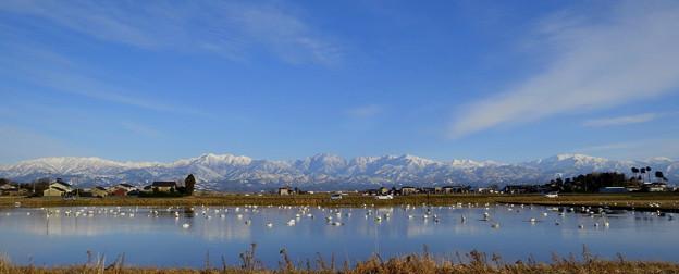 立山連峰と白鳥の湖?