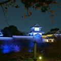 写真: 石川門と桜の紅葉
