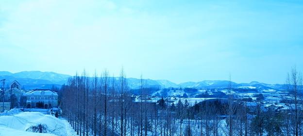 雪のメタセコイアの並木道(3) 山並み