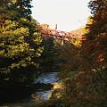 写真: 鶴仙渓 紅葉