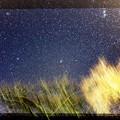 ラブジョイ彗星
