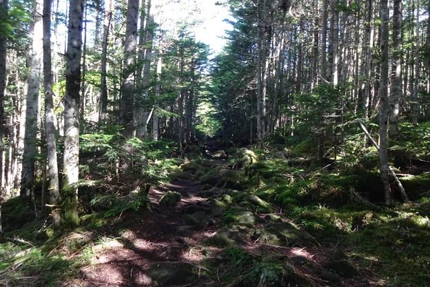 北横岳に登り、駐車場と下山途中で不思議な経験をした・・・。