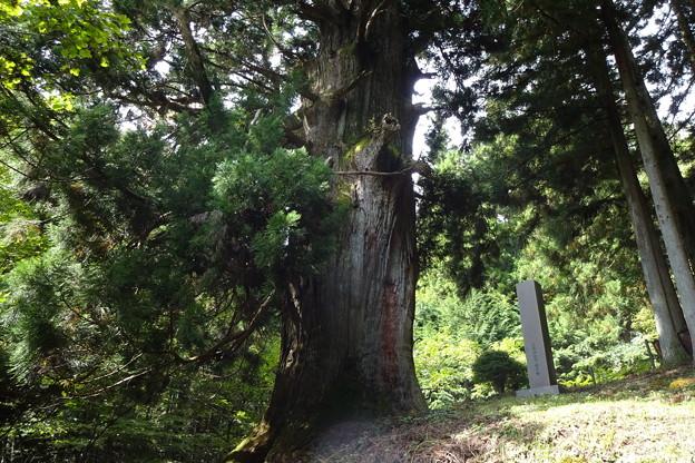 旧甲州街道「笹子峠」と松姫峠の小菅側を登る