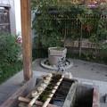 晴明神社の手水舎