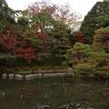 臥龍橋のある庭園