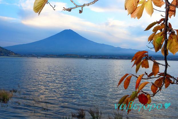河口湖の秋
