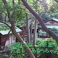 Photos: お茶室 お池 もみじもあるっちゃ=^^=